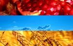 15.06.15 День флага армении