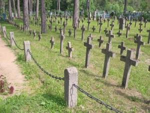 nem_graves0150_d110